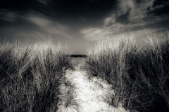 PATH-TO-THE-SEA
