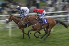 BEVERLEY RACES by Dave Rippon