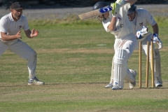 D-BOWLED OUT by Harry Watson