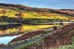 7 LADYBOWER by Phil Holmes