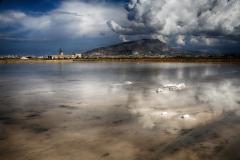 D TRAPANI SALT LAKE by Willem Van Herp
