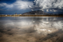 D TRAPANI SALT LAKE by Willem Van Herp