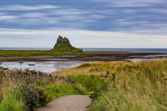 D-HOLY-ISLAND-by-Brian-Johnson