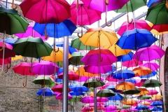 10 HOPING FOR RAIN