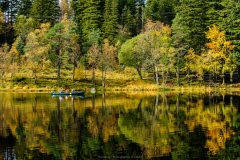 D BERGEN LAKE by Phil Edwards