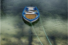 Boat-in-Harbour